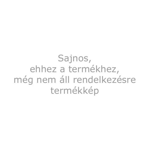 Bővítő modul, Bluetooth-os programozáshoz, 2 vezetékes, ALBA és HERO sorozatú kültéri egységekhez, DUO rendszerhez